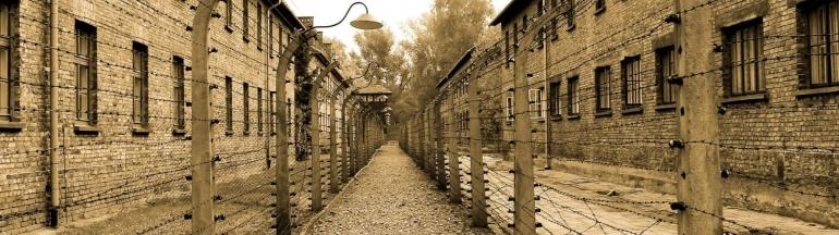 visitar Auschwitz, Qué saber antes de visitar Auschwitz-Birkenau