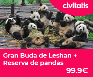 reserva pandas chengdu gran buda leshon