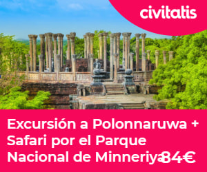 Excursión Polonnaruwa +Parque nacional Minneriya