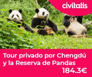reserva pandas chengdu tour