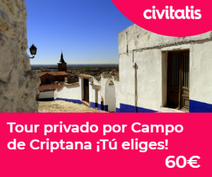 Tour privado Campo de Criptana
