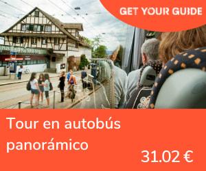 transporte pubico en zurich - tour en autobus
