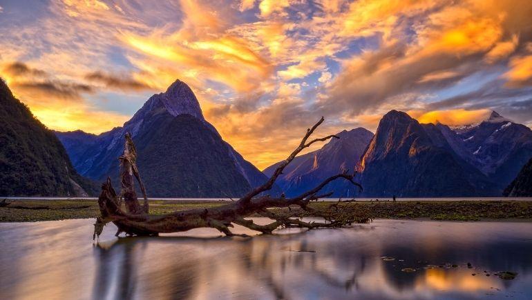 Milford Sound Sunset - Nueva Zelanda