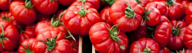 La fiesta de la Tomatina de Buñol